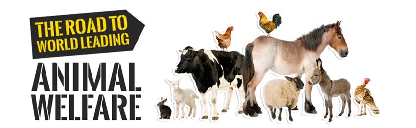 Sign for an Universal Declaration on Animal Welfare